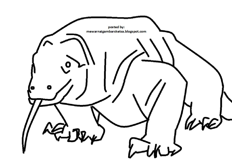 Mewarnai Gambar Mewarnai Gambar Sketsa Hewan Komodo 1