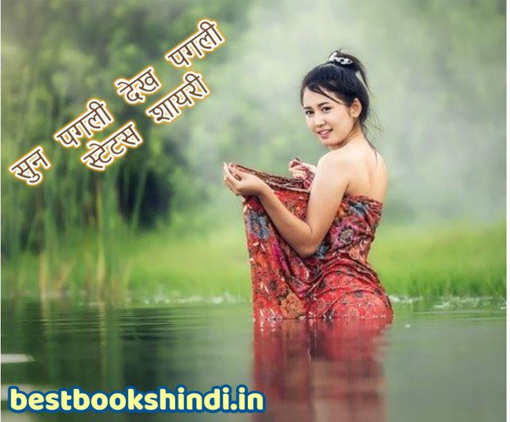 Best Dekh Pagli Sun Pagli Status Shayari In Hindi