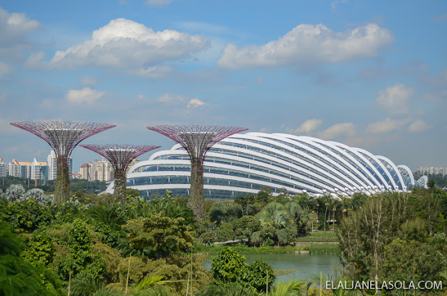 Singapore | Gardens by the Bay