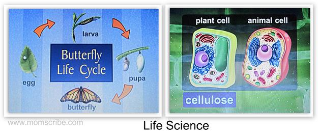 life science dvd