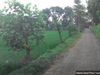 Mengintip Perkampungan Asmara di Jawa Barat yang Bikin Heboh karena Biaya Nikahnya Murah