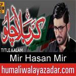 https://www.humaliwalayazadar.com/2012/10/mir-hasan-mir-nohay-2010-2013.html