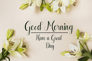 Good Morning Royal Images Download for Whatsapp Facebook90