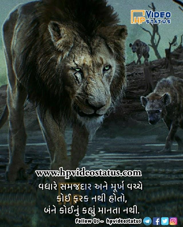 વધારે સમજદાર અને મૂર્ખ | Good Morning Quotes In Gujarati | Whatsapp Status
