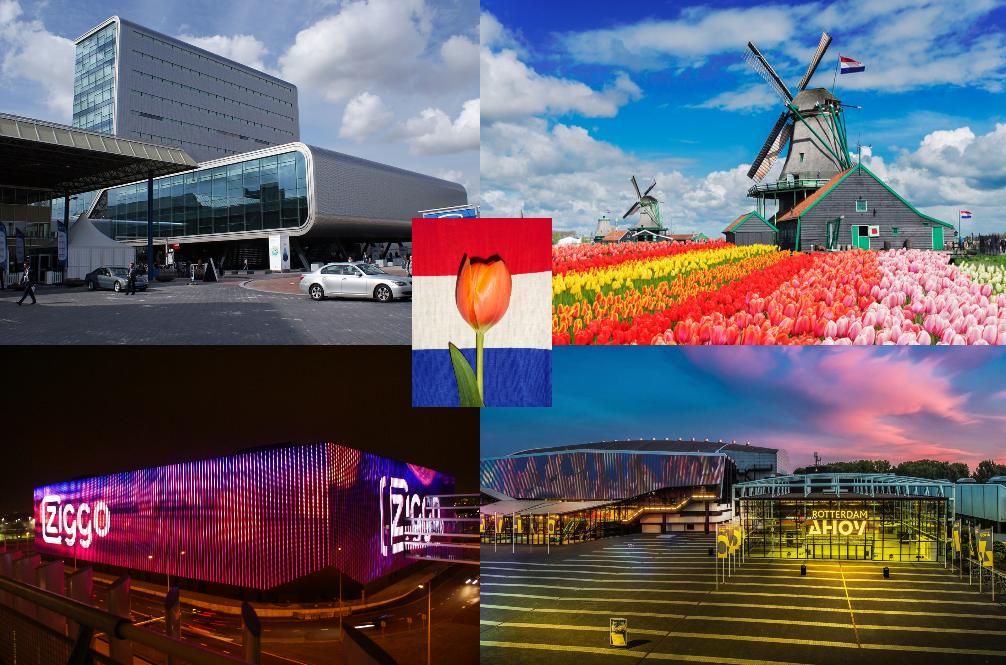 Fred Loya Light Show 2020.Life After Helsinki 2007 Eurovision Eurovision 2020 Dutch