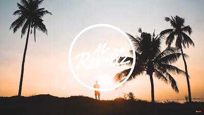 Dua Lipa - IDGAF (Punctual #Remix)  MrRevillz