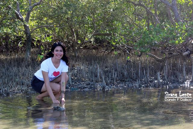 Binibining Pilipinas 2016