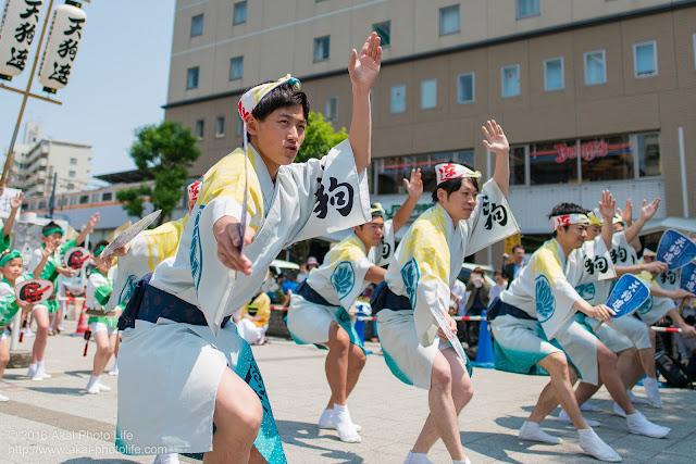 天狗連、熊本地震被災地救援募金チャリティ阿波踊り、男踊りの踊り手の写真