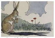 Dongeng Kelinci dan Telinganya yang Panjang (Aesop) | DONGENG ANAK DUNIA