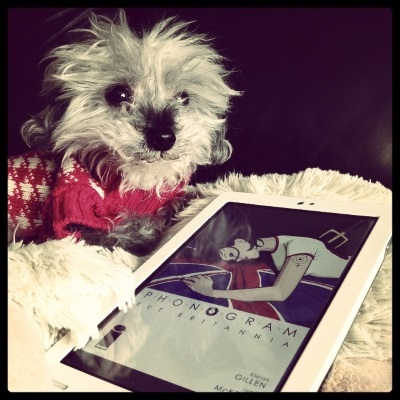 A fuzzy grey poodle, Murchie, lounges on a fuzzy white pillow. He wears a pink and white houndstooth sweater. Beside him is a white Kobo with Phonogram's cover on its screen. The cover features a young, dark-haired, pale-skinned woman laying face first against a Union Flag. A pitchfork emerges from her back, and a dark stain spreads over the back of her white t-shirt.
