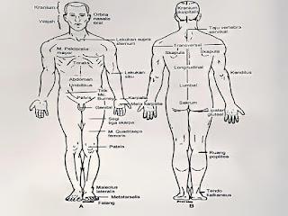 Gambar Penyebab Tekanan Darah Tinggi Menurut Orang Cina Kuno