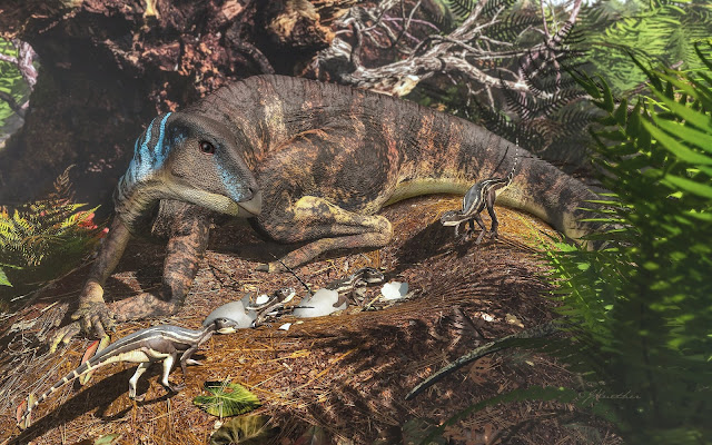 Palm-sized baby dinosaurs revealed in Australia