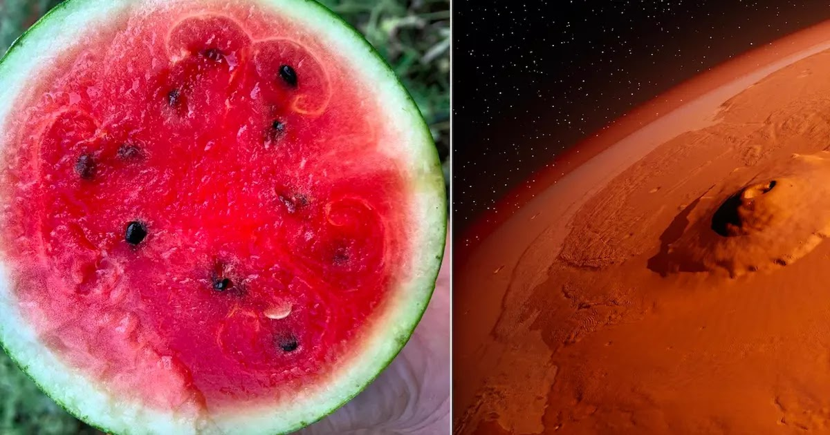 The New York Times Accidentally Publishes An Article Claiming That Watermelons Come From Mars