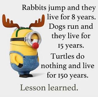 Gambar Minion Kata Mutiara Lucu Meme Quote Bahasa Inggris