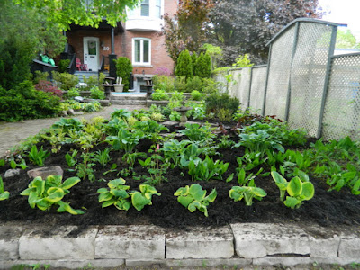 Summerhill Toronto New Front Perennial Garden Makeover After by Paul Jung Gardening Services--a Toronto Gardening Services Company