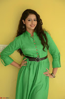 Geethanjali in Green Dress at Mixture Potlam Movie Pressmeet March 2017 009.JPG