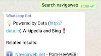 Cercare su internet su Whatsapp con un bot