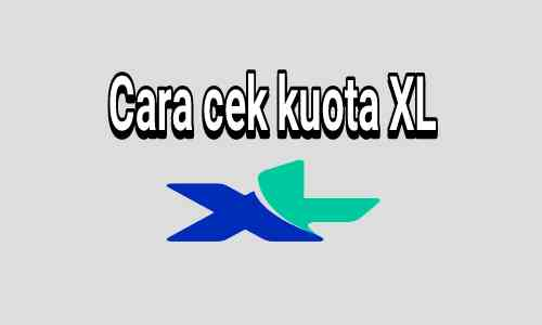 Cara Mudah Cek Kuota XL Terbaru Dan Cepat