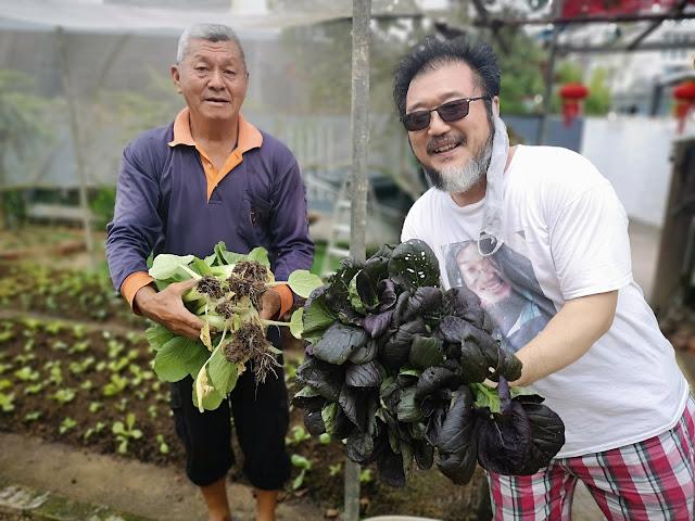 Sembawang Community Garden