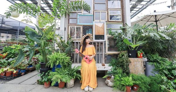 彰化田尾綠果庭院各式多肉植物、庭園景觀、園藝植栽,好逛好拍
