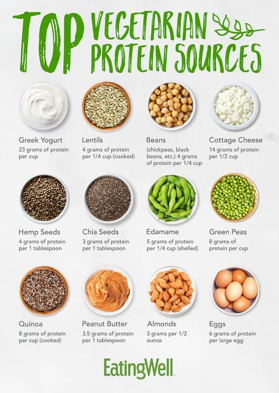 Top Vegetarian Protein Sources For Weight Loss
