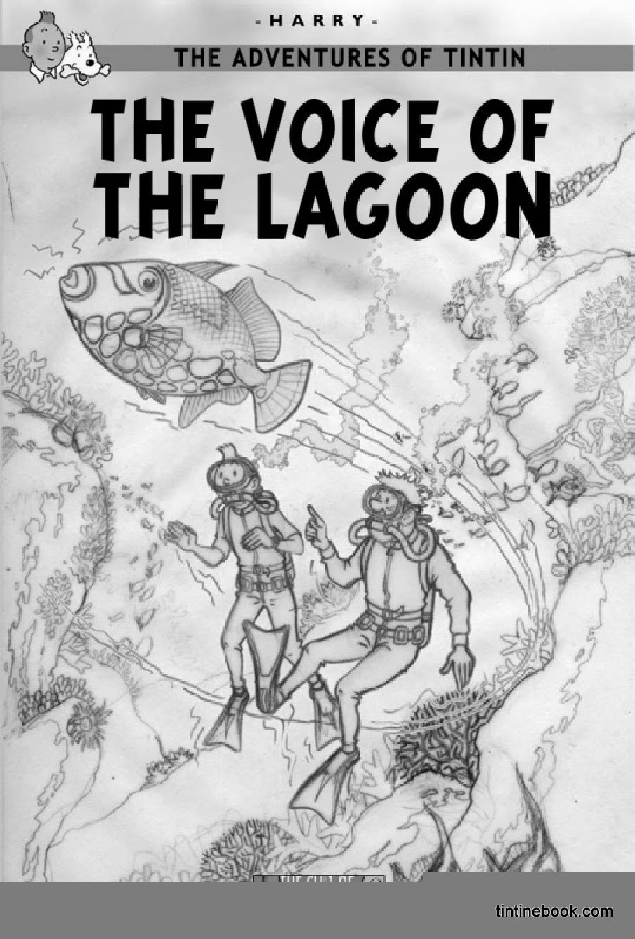 The Voice of the Lagoon Cover