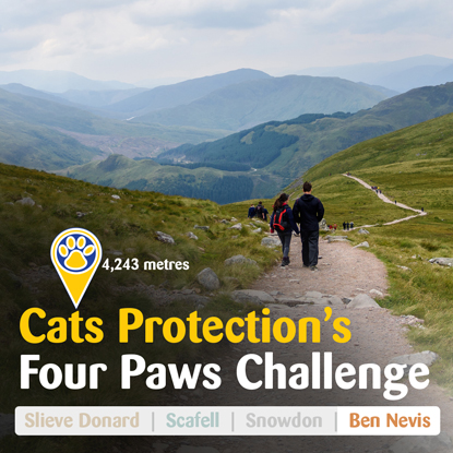 Photo of Ben Nevis with Four Paws Challenge logo
