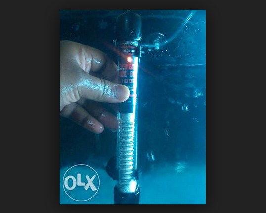 Apa Itu Heater ? Fingsi dan Panduan Dasar Mengguakannya Untuk Aquarium