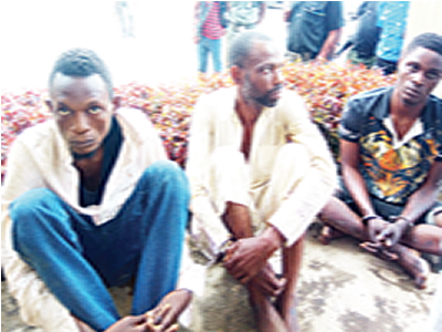alfa herbalist barber arrested kill student money ritual
