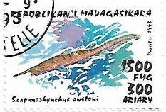 Selo Tubarão-duende