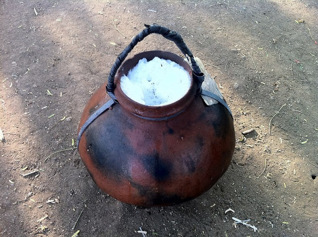 Palm Wine Fermentation