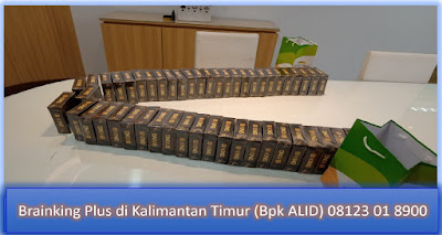 Brainking Plus di Kalimantan Timur