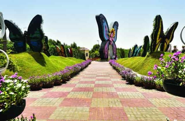 حديقة الفراشات فى دبي,حديقة دبي ButterFly