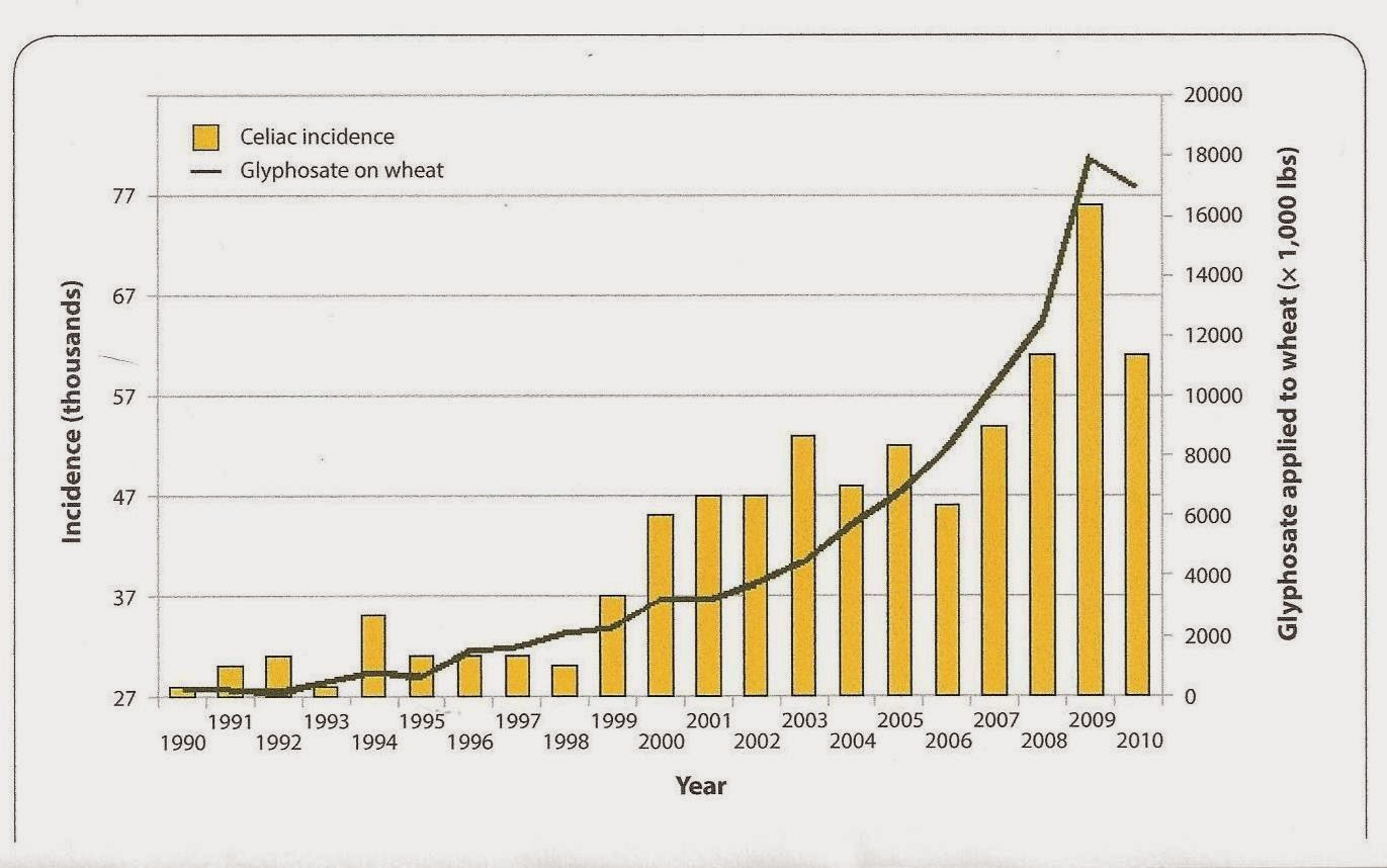 Glyphosate+and+Celiac+Chart - Gluten Intolerance is really GLYPHOSATE POISONING
