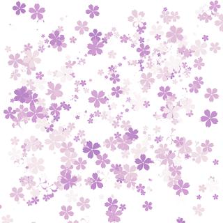 Pink background flower (bunga)