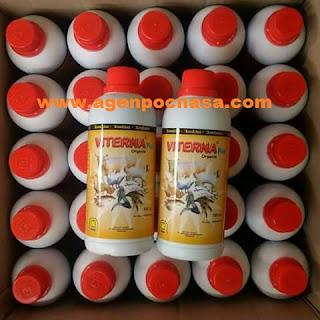 agen-nasa-di-tabang-mamasa-085232128980