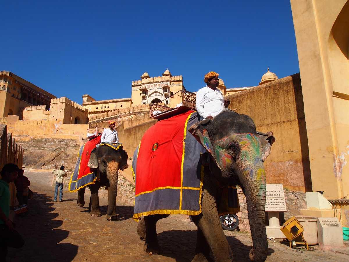 Amber_fort,jaipur,rajasthanno image found