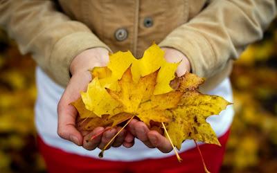 Холодная осень фото