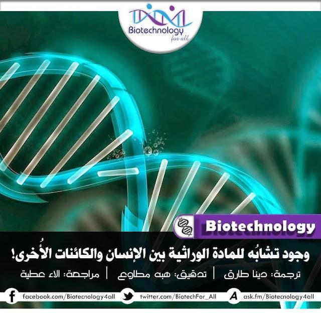 نسب التشابه في المادة الوراثية بين الانسان والكائنات الأخرى