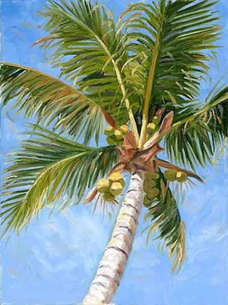 Story Of Origin Of Coconut Tree In Hindu Religion