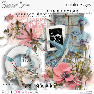 https://pickleberrypop.com/shop/Summer-Breeze-Overlays.html
