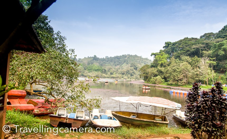Wayanad region in Kerala has lot to offer and 10 days trip is not enough to explore this part of the country. After beautiful walk around Banasura Sagar dam, we headed towards Pookode lake. Pookode Lake is located 15 kilometers away from Kalpetta. This Photo Journey shares some of the moments spent around Pookode lake in Waynad district.It's again a well regulated tourist spot, which has a dedicated entry and a counter for buying tockets & security check. I think entry ticket to Pookode lake was 40 rs per person. The lake is under the South Wayanad forest division and run by District Tourism promotion council. Boating facilities, children's park, handicrafts and spices emporium and fresh water aquarium are among the tourist attractions here.There is a huge space dedicated as kids area. It seems that lot of local folks come to Pookode lake for picnics. Nicely maintained and clean spaces. This kids' zone is facing Pookode lake. On the left hand side, there are few shops selling different types of snacks.We chose a place to sit and have snacks, from where who lake was visible. Above photograph is clicked from same place. It was good to see most of the folks using dustbins for throwing the remains. And authorities had put appropriate number of dustbins around Pookode lake.Pookode lake has lot of lotuses and the lake looks beautiful from the other side. Pookode Lake is a scenic freshwater lake in the Wayanad  district in Kerala, South India. Pookode lake is a natural fresh water lake is surrounded by green forest from on all sides. This forest is spread over high mountains around the lake. All this setting makes it a beautiful place to spend some quality time in peace. Are you wondering about peace at touristic place? :)Pookode lake is spread across an area of approximately 8 hectares and with a maximum depth of 6.5 metres. Lake is 3 km from Vythiri town and is one of the most popular tourist spots in Wayanad.There is a path built around the lake and people prefer to walk around this beautiful terrain surrounded by huge trees of the forest. As you walk around the lake, lot of birds welcome you with beautiful sounds. We across a region with lot of colorful flowers and hundreds of butterflies surrounding these flowers. We stopped there for 10 minutes and then moved ahead.  It was extremely difficult to capture these butterflies when they were flying, so here is one of the clear shots of butterflies I could get :). We were extremely happy about our decision to take a relaxed walk around the lake and skip boating.It seems that Pookode lake has the shape of India's map. The green cover around the lake makes Pookode a special and unique lake in Kerala. Pethia pookodensis, is a species of cyprinid fish known to occur only in Pookode Lake.The lake has abundance of blue lotus and fresh water fishes. The forests surrounding the lake hold many wild animals, birds and flies.After good time at Pookode lake, we headed towards Suchipara Waterfalls in our Auto. Keep watching this space for our next post on Suchipara and some of the unexpected experiences we had.