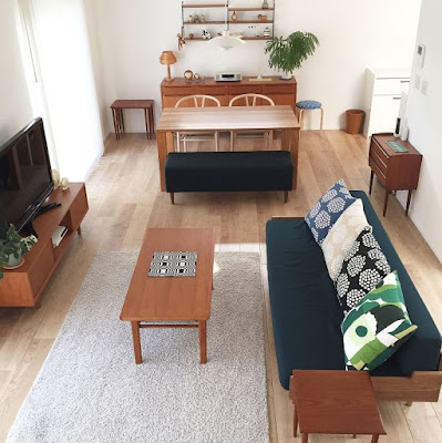 one-room apartment decor idea for living area and dining area