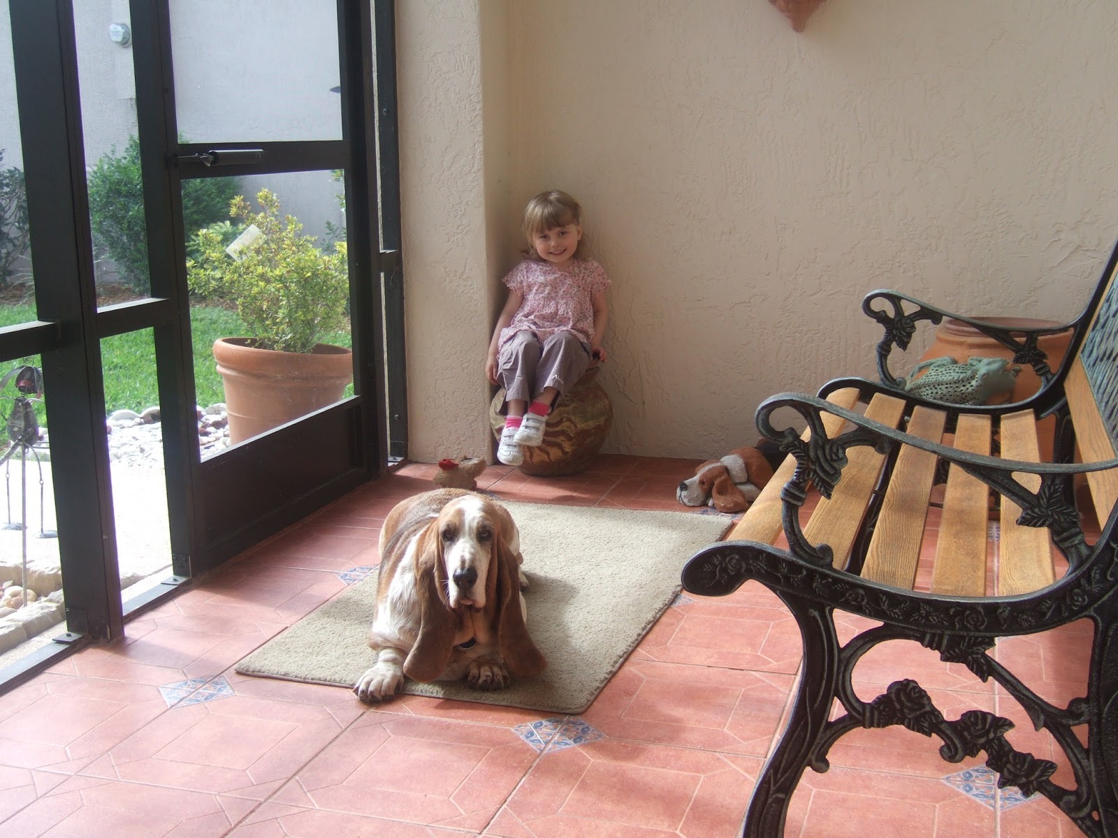 Tubblet and basset hound