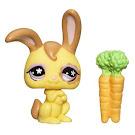 Littlest Pet Shop Singles Rabbit (#887) Pet