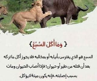 لفهم آيات القرآن الكريم 4.jpg