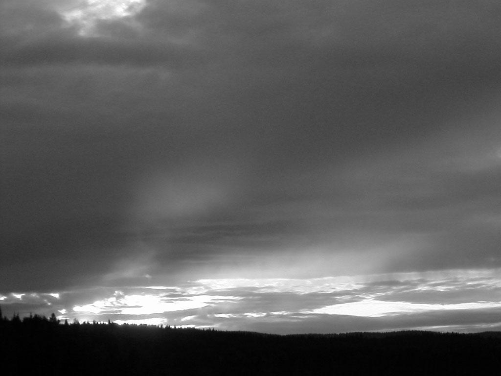 The Sky Is Gray Summary