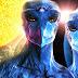 Los extraterrestres Aviares Azules, La Alianza Seres Esfera