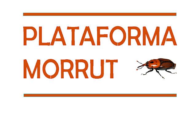 Plataforma Morrut de les palmeres de Vilanova i la Geltrú