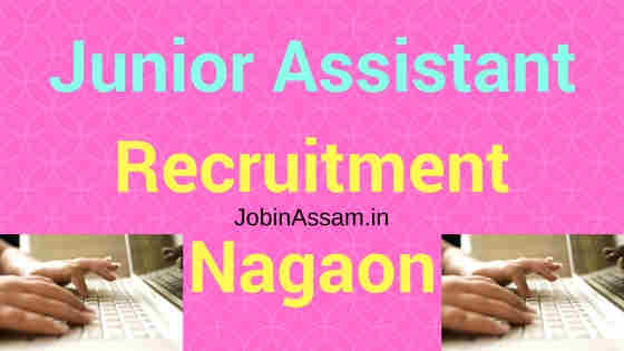 Town & Country Planning, Nagaon Recruitment